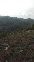 [Tarn] Puycelsi 2017 - 1ère édition - 46 km Randonnée de Puycelsi, première édition organisée pendant les fêtes de Puycelsi. Le parcours est constitué de deux boucles qui peuvent être faites indépendamment l'une de l'autre. La première boucle part du côté des Barrières et de Sivens, l'autre vers Bruniquel et les Abriols avec une montée interminable (certains l'ont quand même gravie, si c'était à refaire, je prendrais la route). Quelques points de vue magnifiques sur Brian-de-Vère.