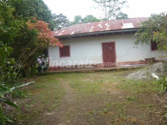 Finca en Venta - Otros municipios vereda Socabon