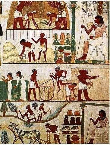 Ancient Egyptian Farmer's Calendar. Wall mural showing land preparation, ploughing, reaping, winnowing, grain storage