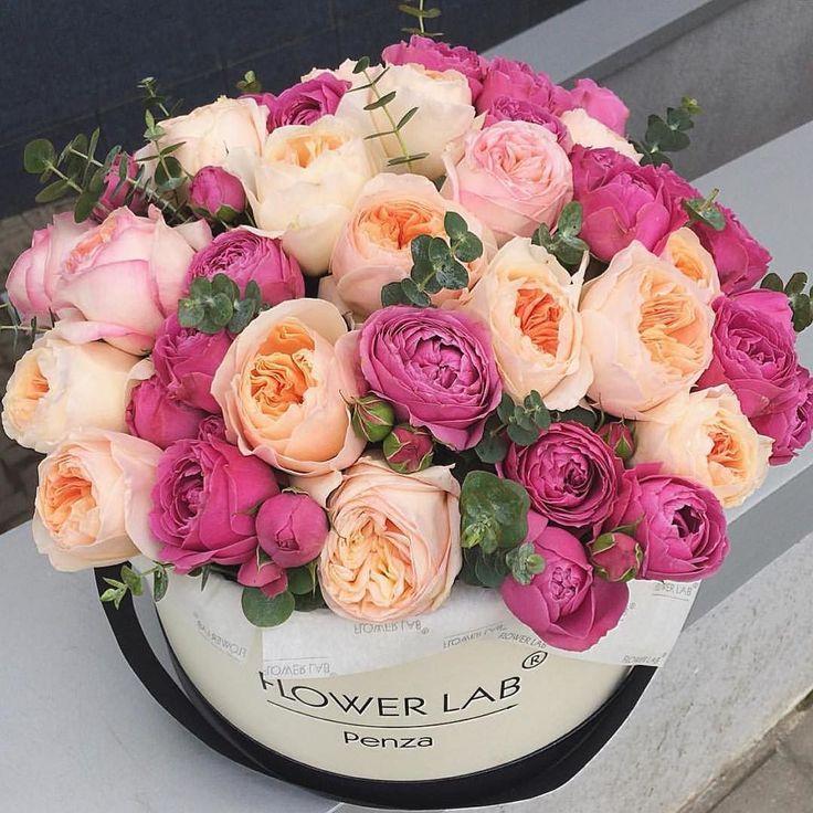 Картинки с днем рождения пионовидные розы в коробках