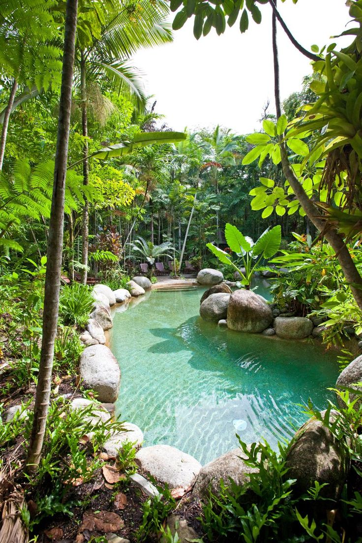 Rainforest pool at Silky Oaks Lodge, located next to the World Heritage listed Daintree Rainforest National Park, Australia