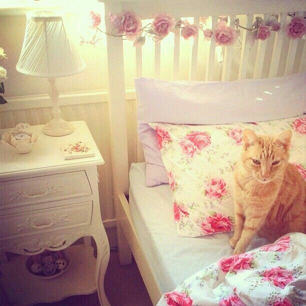 Girly girl room super cute kitty cat girly room for Cute girly rooms