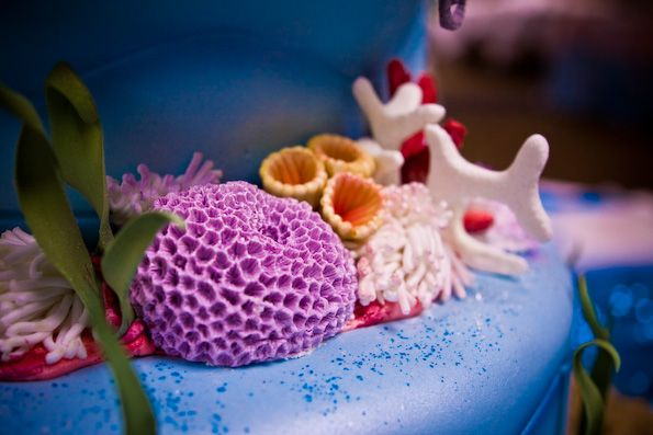 love the sealife on this cake!