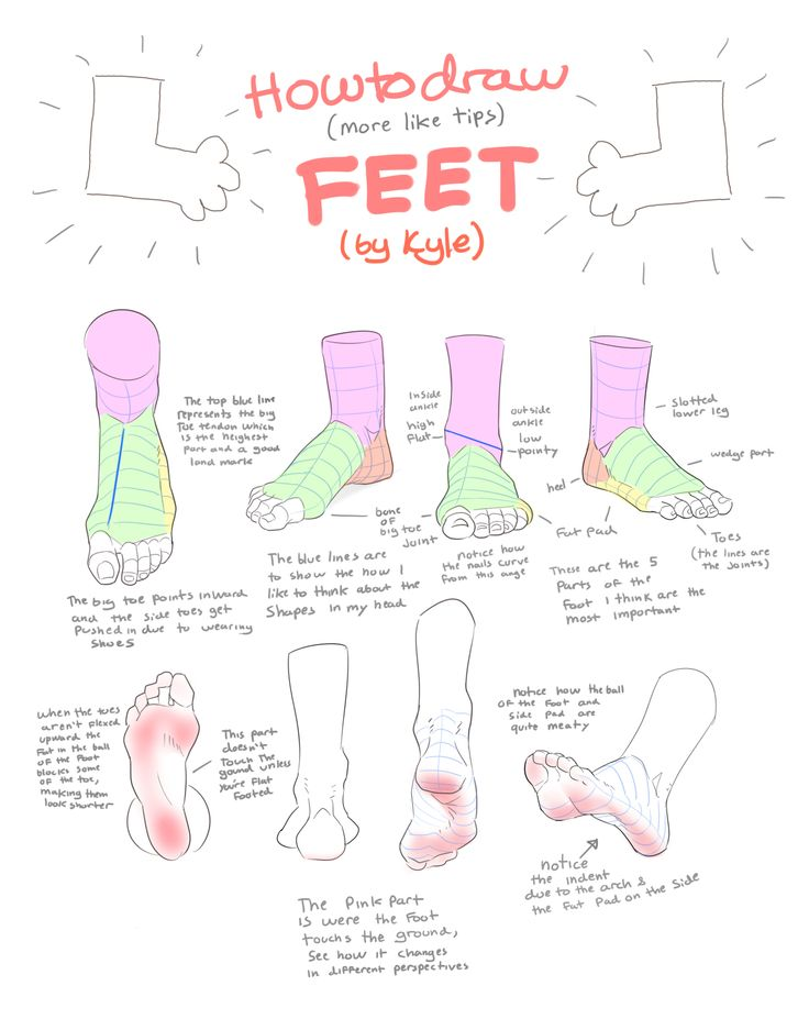 47 best Anatomy: Hips, Legs & Feet images on Pinterest | Drawing ...