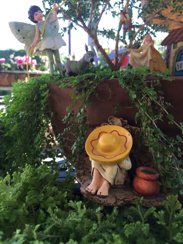 17 best images about la fiesta miniature fairy garden on Small garden fairies