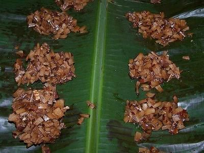 jamaican coconut drops: I had some of these in Jamaica given to is by someone on the street - oh my!