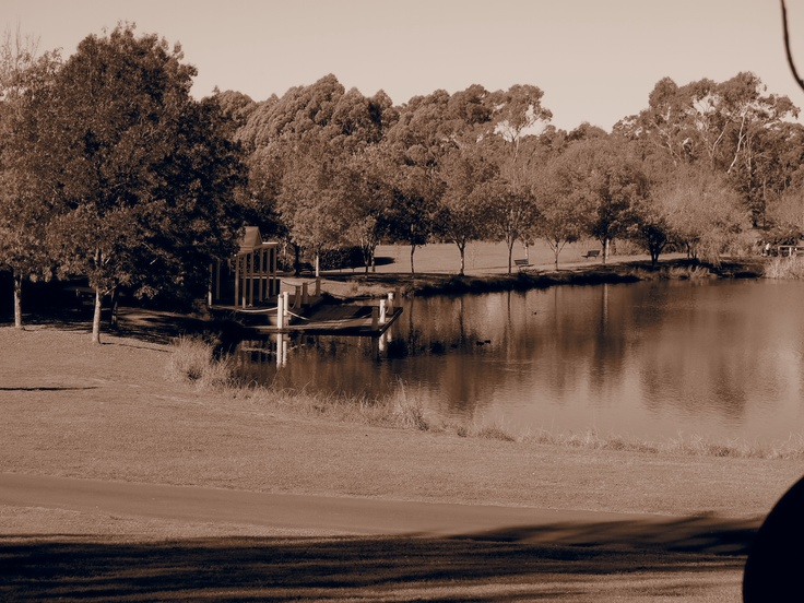 Gentle Sepia of the lake