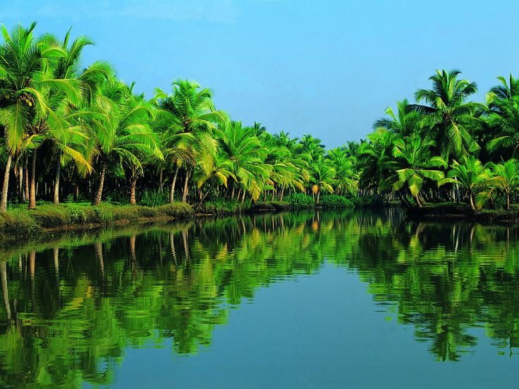 Backwaters are the major attraction of Kerala tourism. Dotted with palm and coconut trees, backwaters cruise in a traditional houseboat will truly offer tourist with an amazing memories. Backwaters in Kerala are the major crowd puller in the state and tourist from all over the world come here to enjoy the uniqueness of Kerala backwater. In this state there are good numbers of backwater destination among which Kumarakom, Kovalam, Kottayam, Kollam, Kasargod, Cochin and Alleppey are the major…