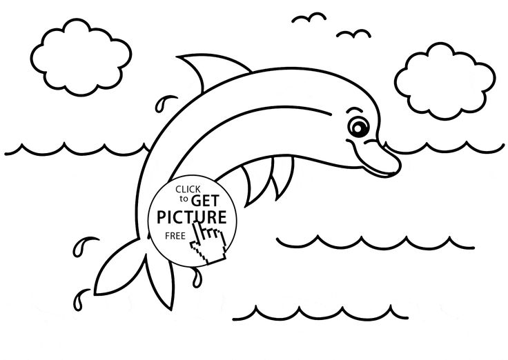 Little Dolphin Animal Coloring Page For Kids Pages Printables Free