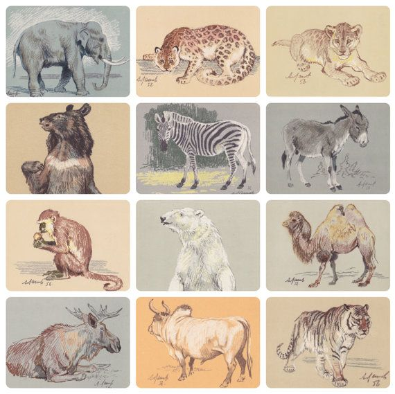 ZOO Drawings by A. Laptev. Complete Set of by RussianSoulVintage