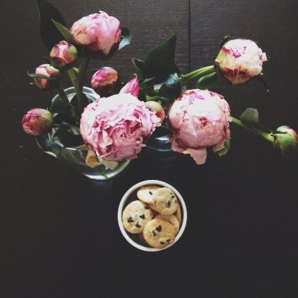 ++ s fawn deviney: Liek Flowers, Favorite Flowers, Flowers Totally, Flower Cookies, Flowers Flowing, Flowers Cookies