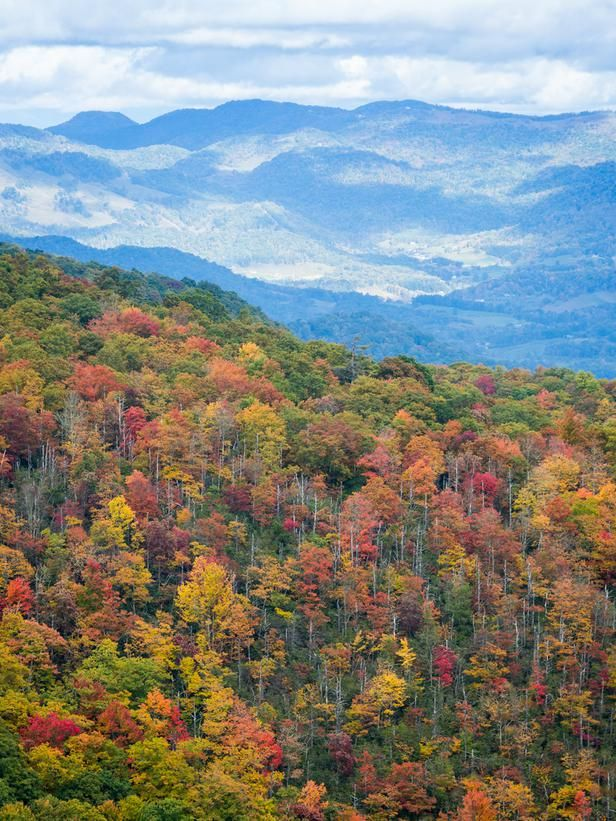 Fall foliage in its full glory at The Swag Country Inn, near Waynesville, NC.