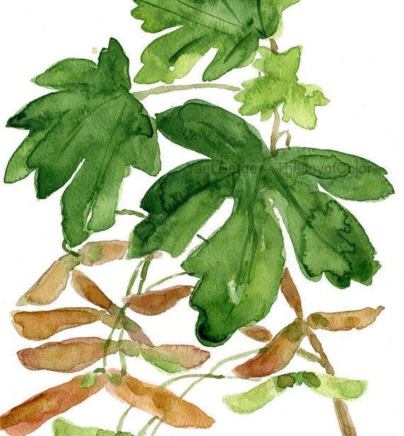 Árbol de arce hojas impresión, hojas de arce grabado acuarela, pintura botánico, bosque, otoño, verde marrón, arce arte grabado, homedecor