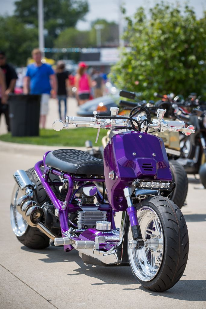 Honda Usa Cars >> Lambo purple | Ruckus | Scooter 50cc, Motor scooters ...