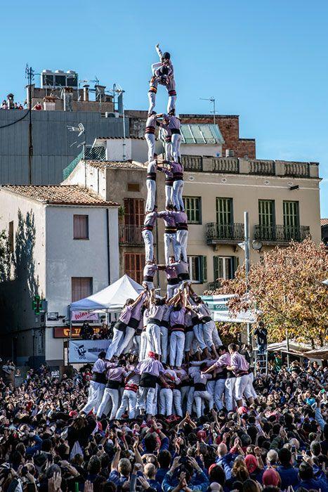 Diada Castellera dels Minyons de Terrassa (novembre 2014)