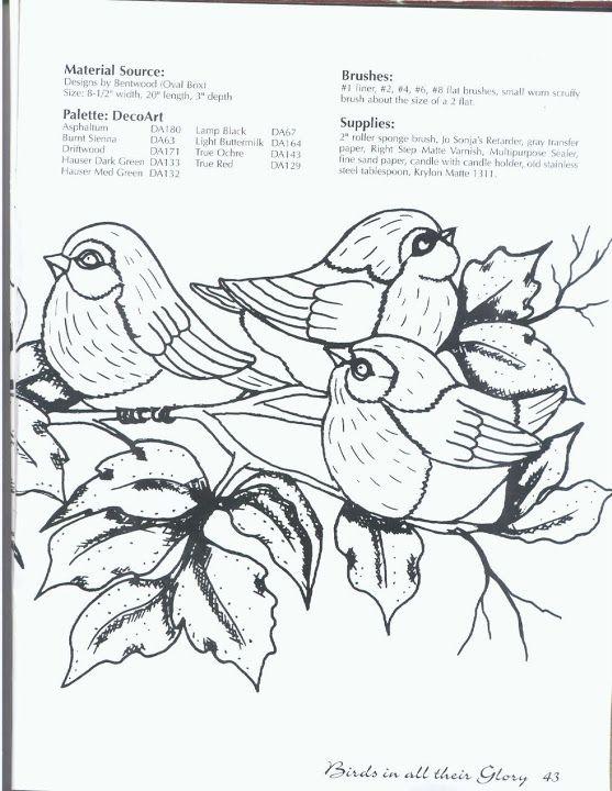 Birds In All Their Glory - Maria Vai Com AS Artes Neia Reis - Picasa Web Albums
