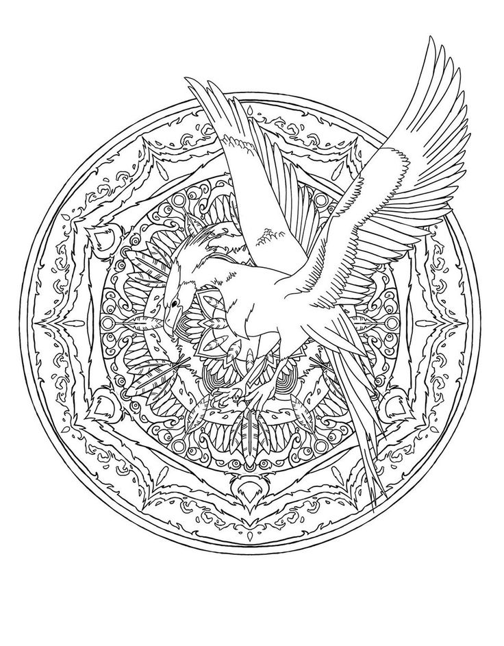A 'Harry Potter' Coloring Book Crawling With 'Fantastic Beasts'