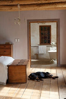 In Tinie Bekker's old farmhouse outside Calitzdorp, treasures from a pioneer past warm the quietly updated interior.