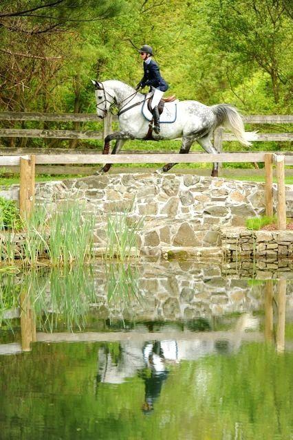 english equestrian dating