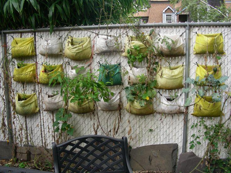 118 best Landscape potential images on Pinterest Gardening