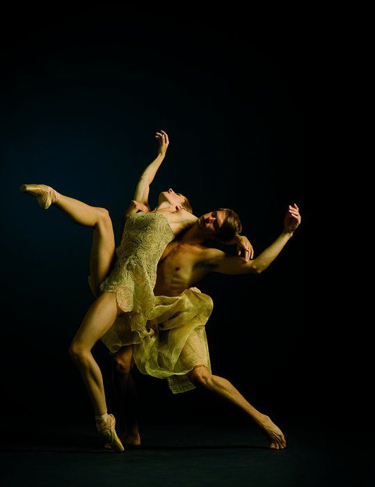 The Bee's Knees: Alonzo King Lines Ballet company. *sigh*