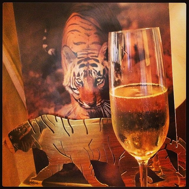 Tigers and champagne! #sherbagh #india2014