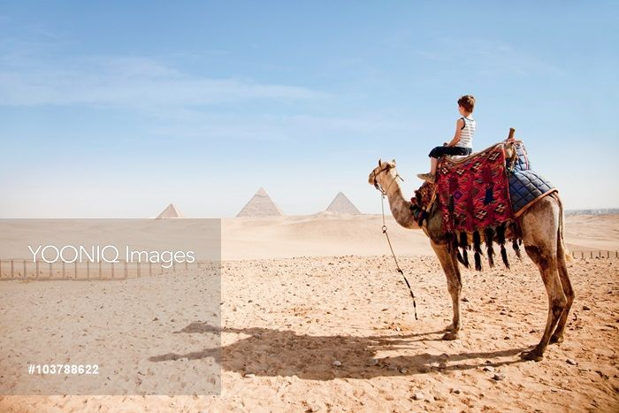 Yooniq images - Boy on a camel