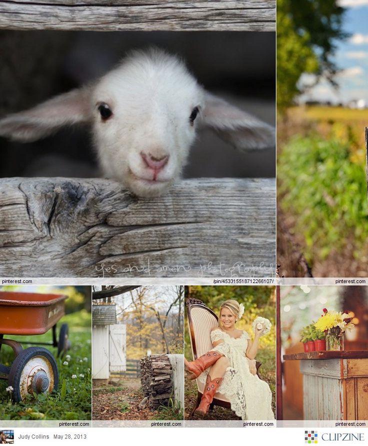 Country + Farm Living