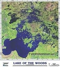 In the lake of the woods book essays