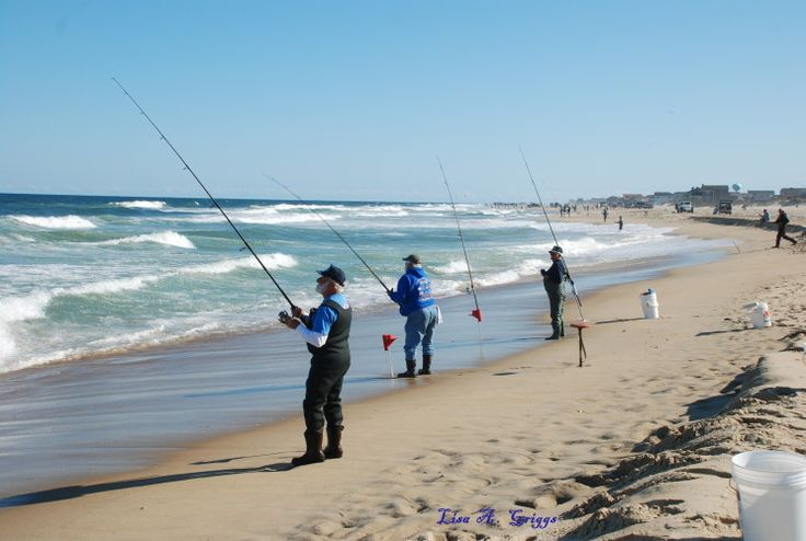 25 best ideas about surf fishing on pinterest surf for Surf fishing virginia beach