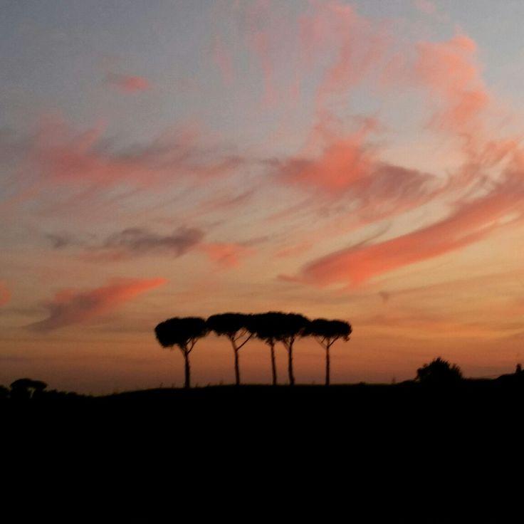 Rome (agro romano)