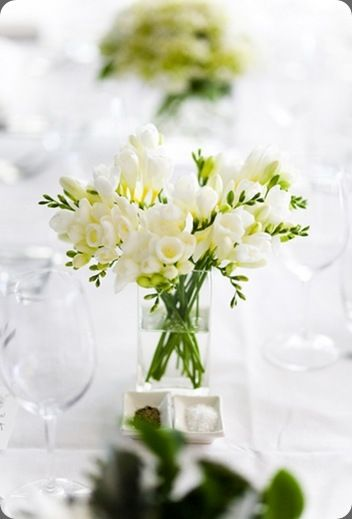 Great example of a simple and sweet smelling arrangement of white Freesia.Fragrant Flower Bouquets, Wedding Flower Fresia, Freesia Wedding Bouquets, Bouquets Fresia, Fresh Flower, De Tables, Fragrant Centerpieces, Flower Girls, Beautiful Bouquets