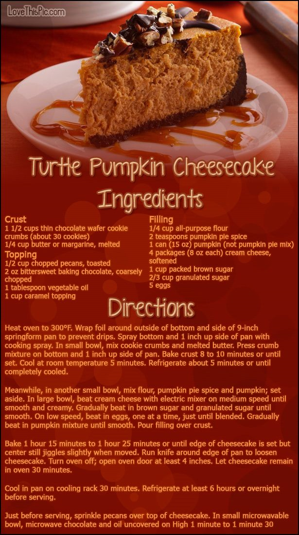 Turtte Pumpkin Cheesecake thanksgiving recipes thanksgiving recipes easy recipes dinner recipes holiday recipes instructions cooking ingredients recipe desert recipes cake recipes
