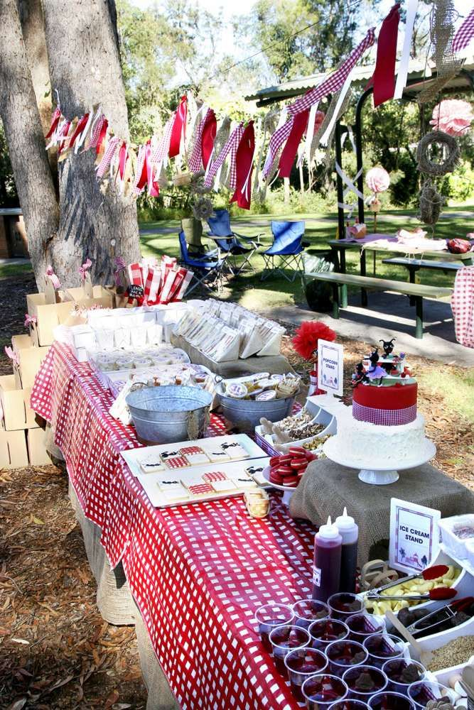Picnic red white gingham birthday party ideas