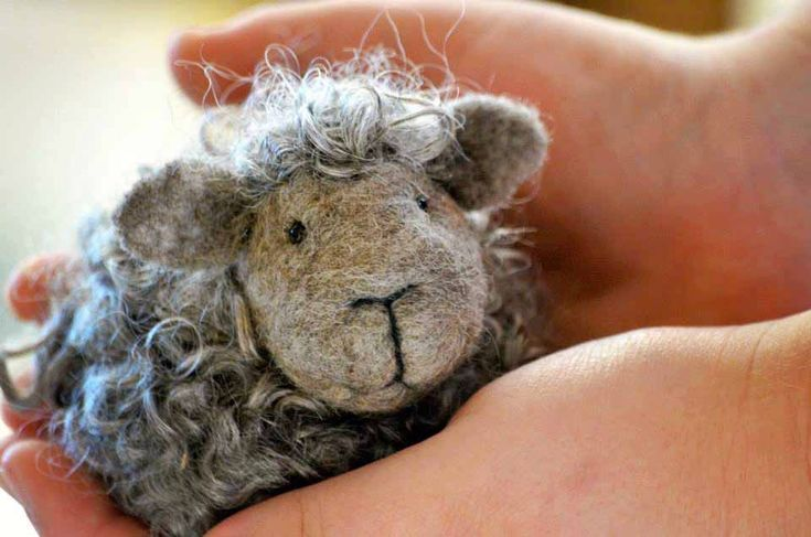 Black Sheep Felting Kit by BearCreekDesign on Etsy