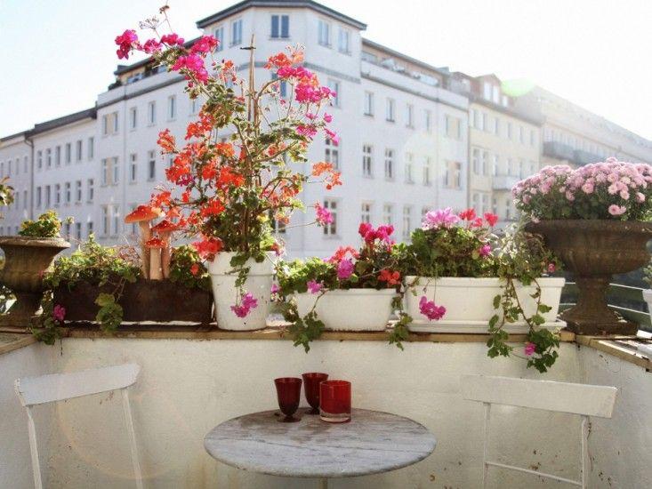 Studio Visit: At Home with Berlin's Star Florist, Annett Kuhlmann