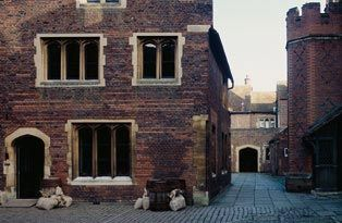 Master Carpenter's Court, part of the remaining Tudor palace.