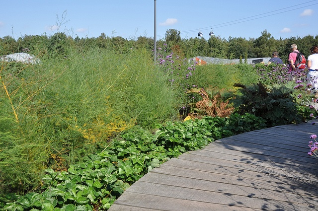 Border met eetbare planten by opdeboerderij.be, via Flickr (Floriade 2012)