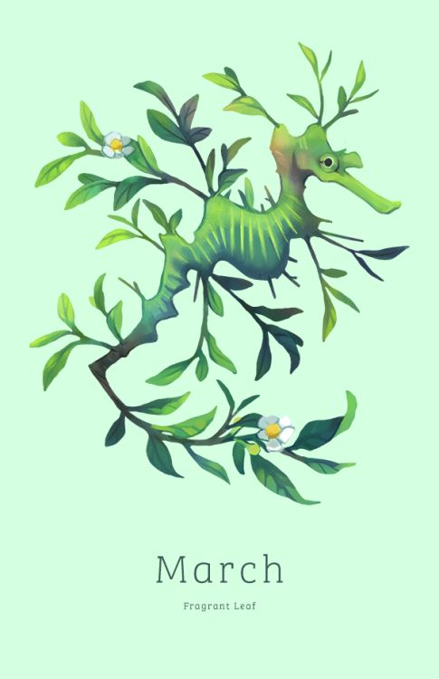 March - Fragrant Leaffrom myTea Spirits 2015 Calendar