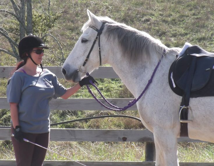 What training horses has taught me about relating to men.                                             It's all about boundaries, consistency and repetition.                             #ILoveHorses #SelfEmpowerment