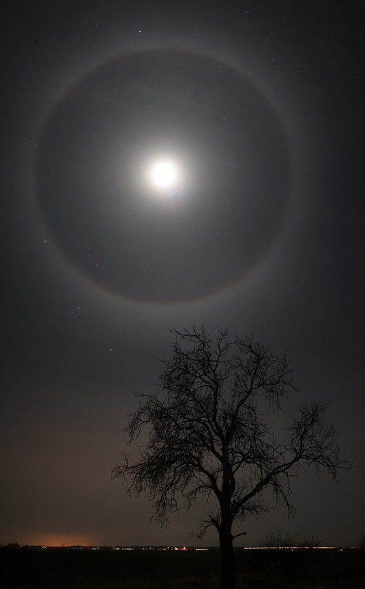 Lunar halo. I remember seeing one of these a few years back. Beautiful.