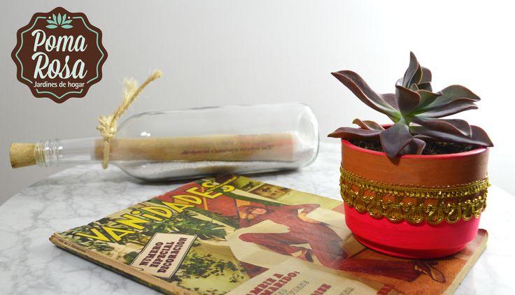 La Echevería! Esta planta es hermosa con todos sus colores y formas.  Precio: $30.000