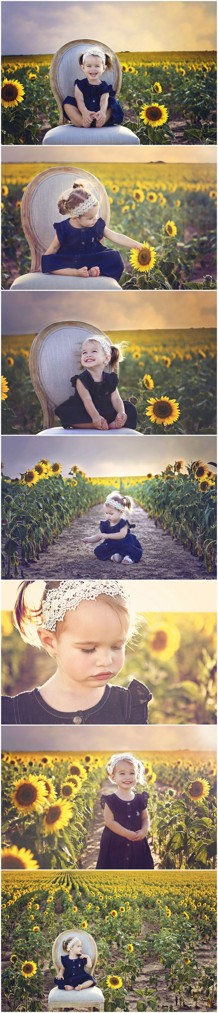 Sunflower fields & photography; red wagon instead of chair