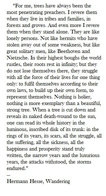 Trees - Hermann Hesse
