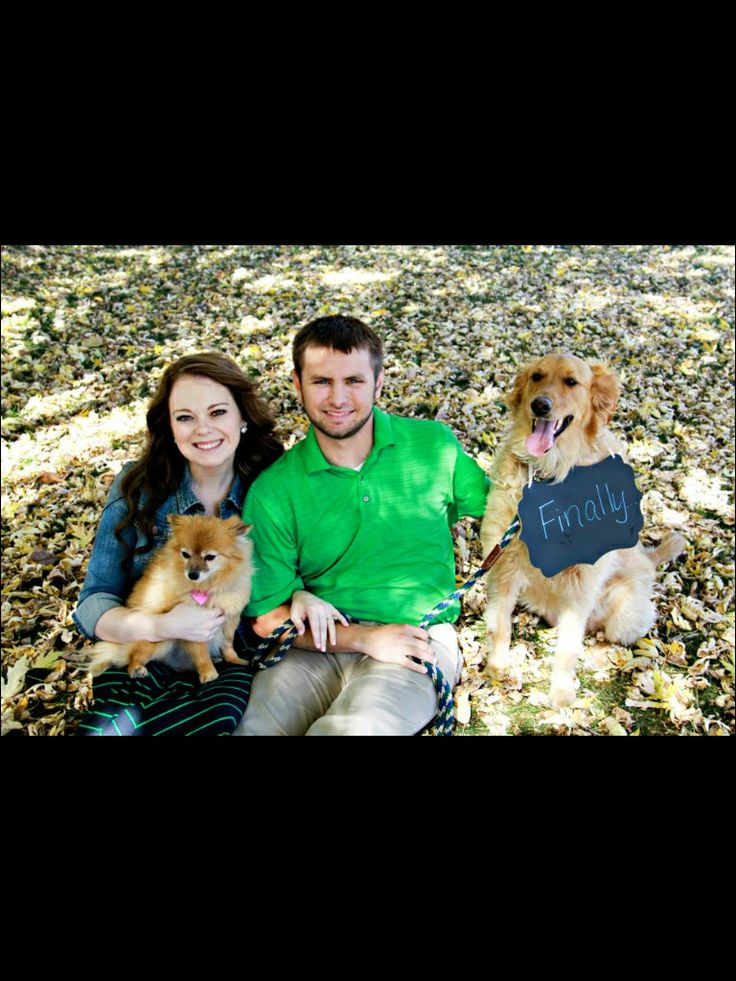 Engagement pose with dogs