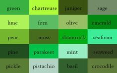 The Dictionary of Colours - Other shades of green would include: Kelly, grass, leaf, apple, jade, spinach, willow, avocado, bottle green, asparagus, artichoke, mantis, forest, malachite, harlequin,  shamrock, verdigris, xanadu.