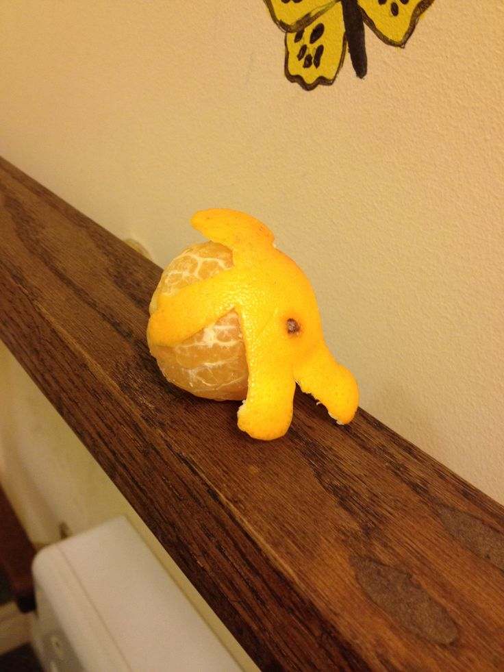 Tangerine from lunch. Does awesome somersaults!