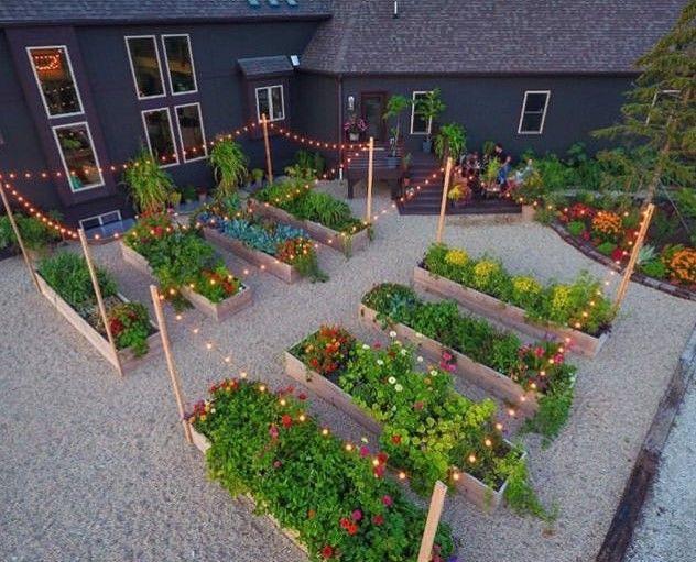 Stunning Vegetable Garden Ideas Family Food Garden Vegetable Garden Design Vegetable Garden Beds Backyard Garden