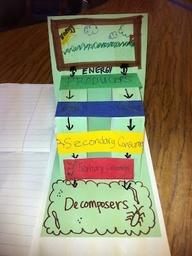 8th grade ipc project ideas?