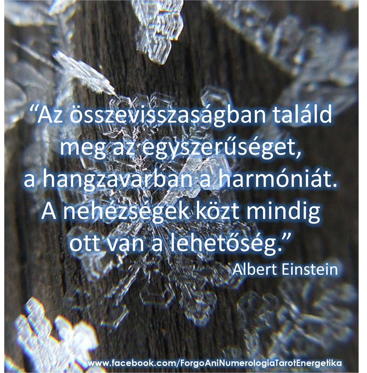 www.aniforgo.com